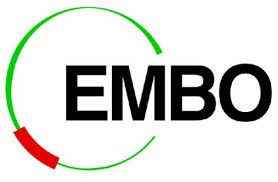 EMBO Fellows' Meeting