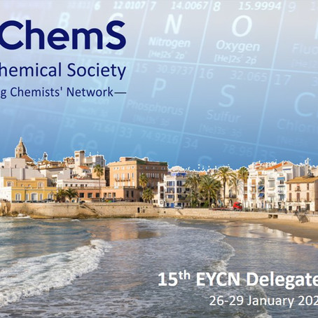 Great success of the EYCN DA in Sitges!