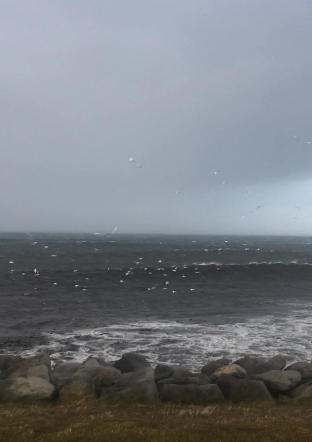 Windy day in Garður