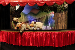 Pedro e o Lobo. Teatro Infantil