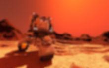 Rover blog pic.jpg