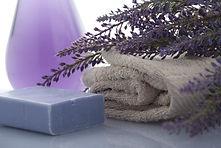 lavender-3066531_960_720.jpg