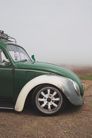 Beetle, 2018