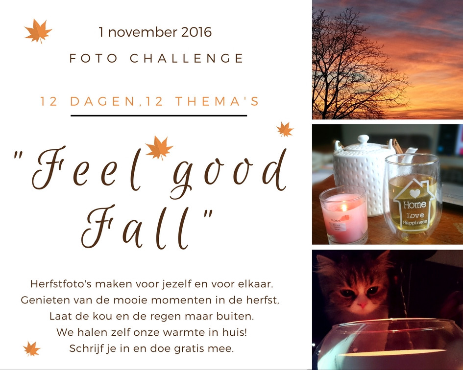 Feel good Fall challenge 2016