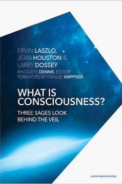 What is Consciousness? Three Sages look behind the Veil