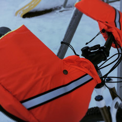 Orange Sunny Day