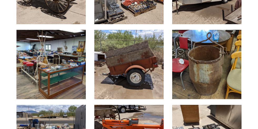 Full Day AUCTION:  Live & In-Person