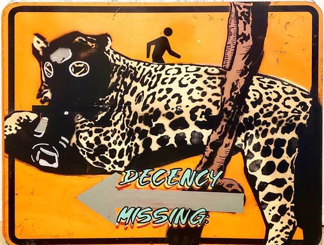 New candidate for extinction_ Jaguar.jpg
