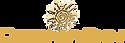 designer-skin2-logo.png