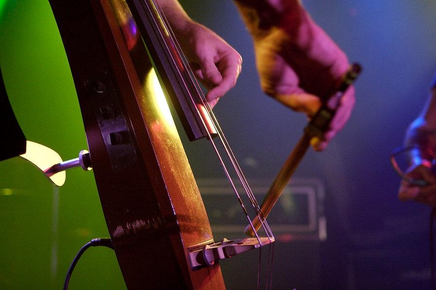 James Whiton electric upright double bass virtuoso