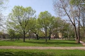3 Amazing Parks to visit in Albany Park, Chicago