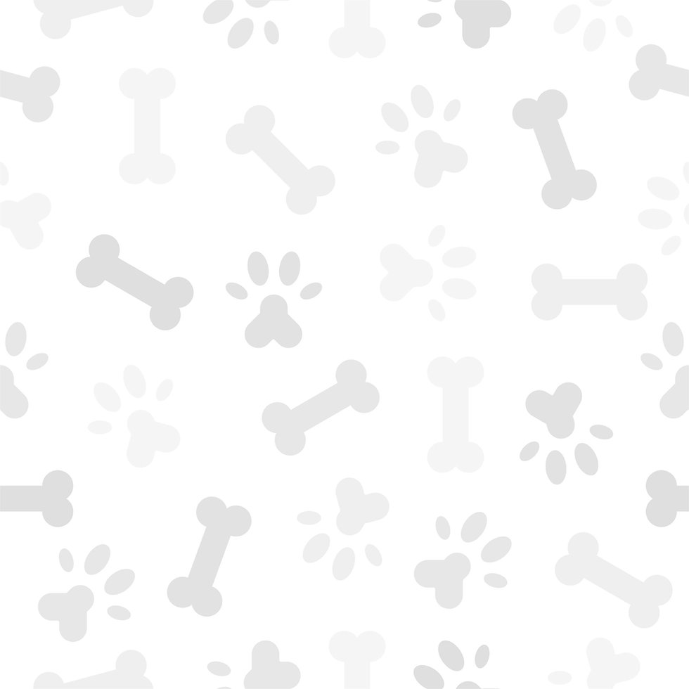 dog_and_cat_pattern-11_edited.jpg