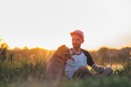 Man interacts with his dog in sunset, su