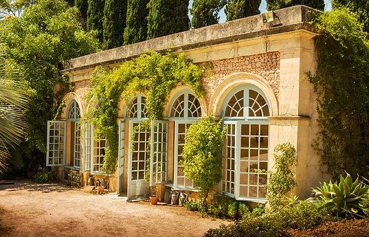 Garden plants conservatory (orangery) bu