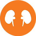National Kidney Foundation of Illinois_K