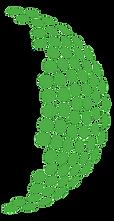 MMO Logo.png