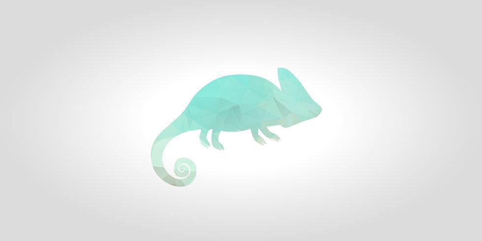 chameleon 4.jpg