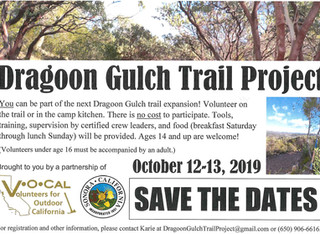 Dragoon Gulch- Trail Build Weekend!