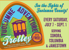 Trolley to the Summer Arts & Wine Festival-- Saturday July 28!