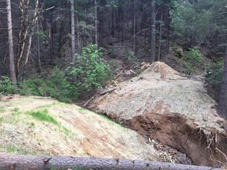 Sugar Pine RR Trail/Grade blowout!