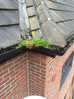 It's the time of year to think about your gutters!