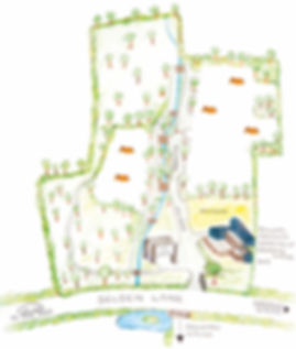 Fox Wood site map (water colour painting