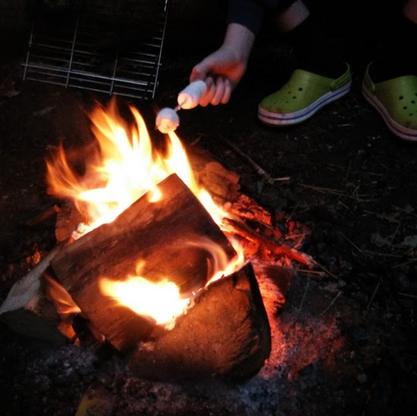 Campfire at Fox Wood Campsite