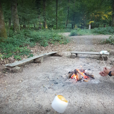 Toasting marshmallows at Fox Wood