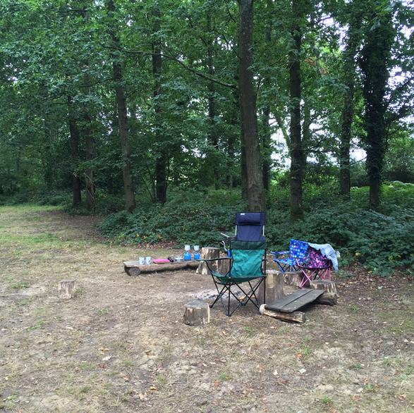 Find forest campsites near me (Worthing)