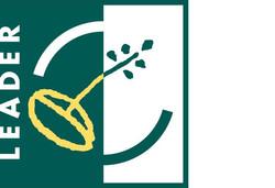 Leader Logo (2)