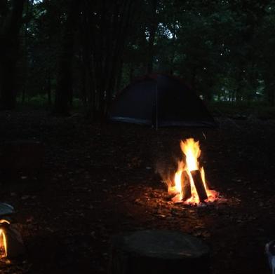 Fox Wood campfire