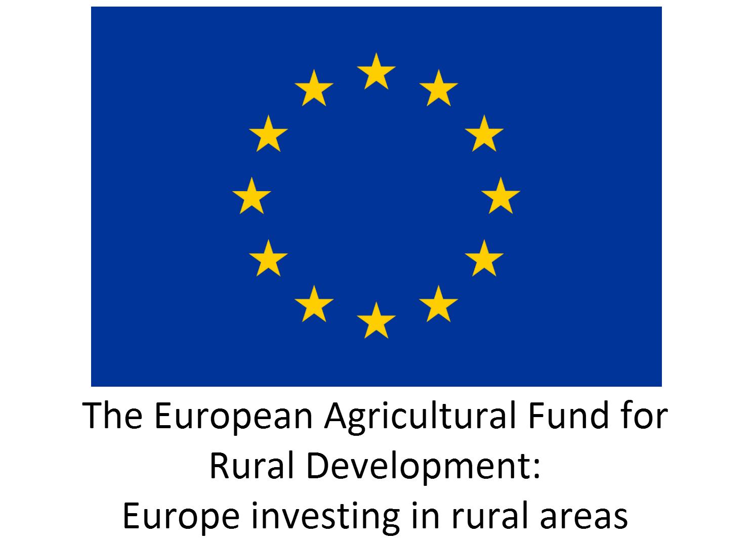 EU Logo - Solid