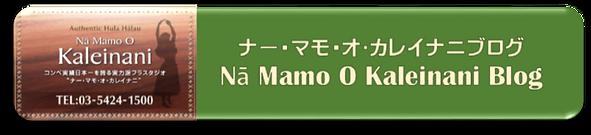 ナマモブログリンクボタン.png