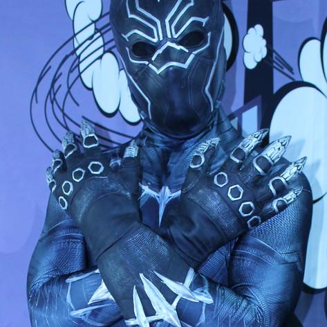 Panther Hero