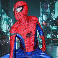 Spider Hero