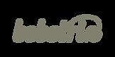 bebetrix_logo-01.png