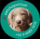 logo petshopvirtual_Mesa de trabajo 2.pn