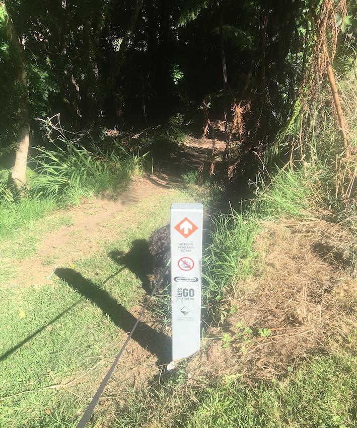Bush path entrance