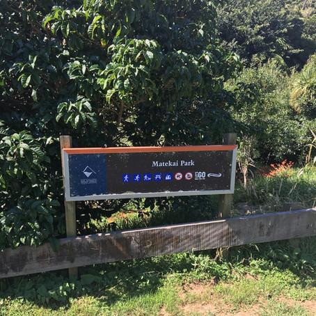 Matekai Park - Oakura