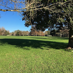 Aorere Park - Mangere East (South)