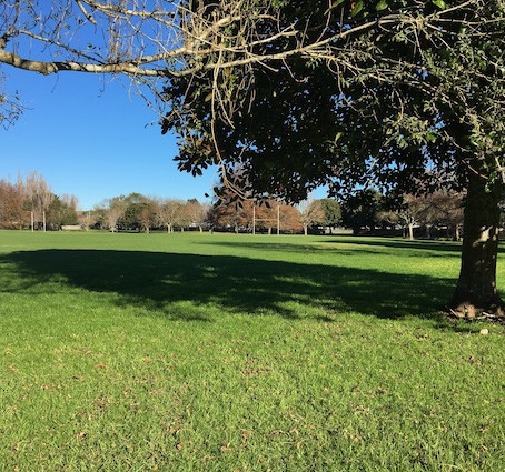 Aorere Park - Mangere East (South)