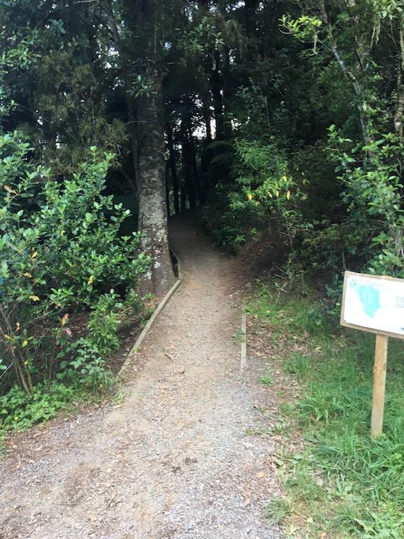 Totara Track entrance
