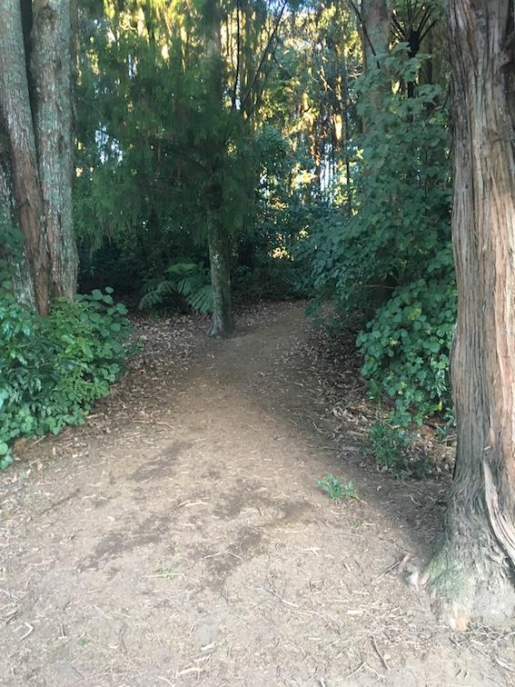 Entrance to bush walk