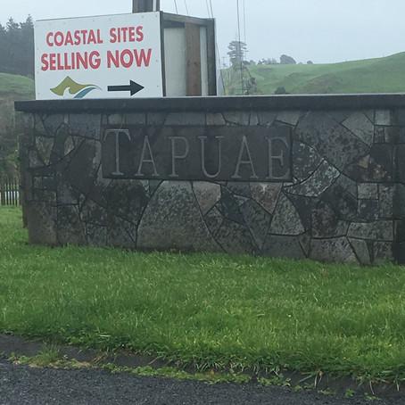 Tapuae Country Estate - Omata