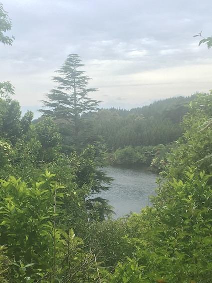A lake glimpse!