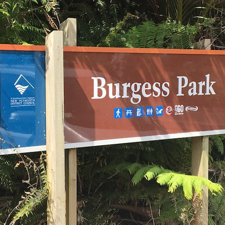 Burgess Park - Burgess Hill, New Plymouth