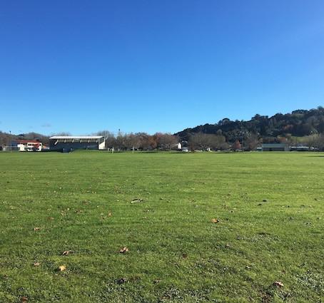 Centennial Park - Te Kuiti