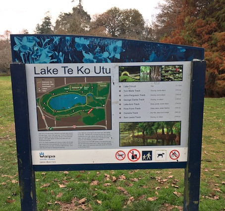 Te Koutu Lake Domain - Cambridge