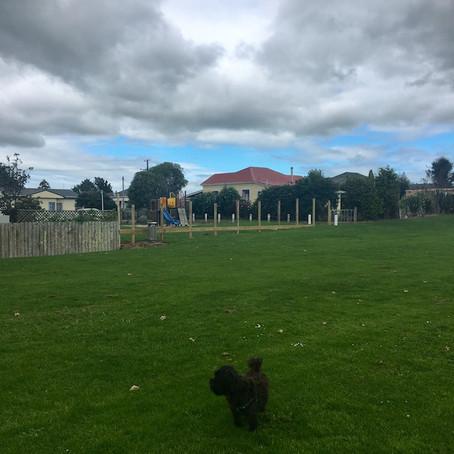 Tayler Park - Eltham