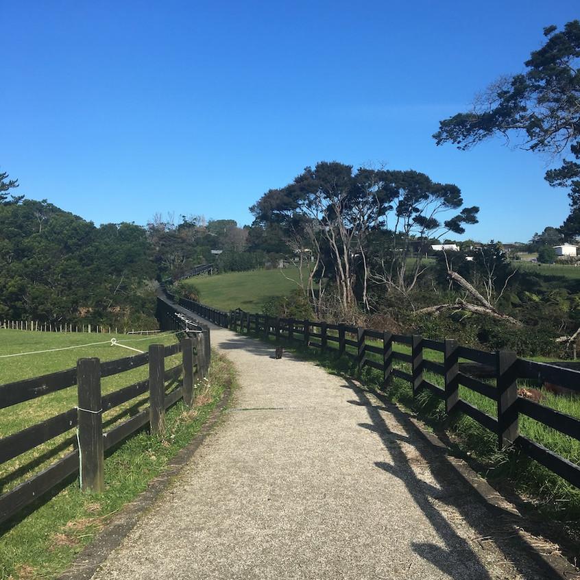 Pathway alongside pony club